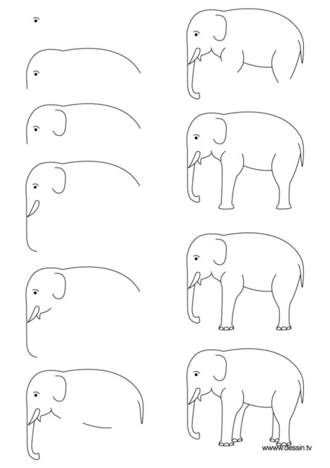 Drawing elephant | Library | Scoop.it