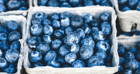 How #Antioxidants Can Help #Fight #Depression | Nutrition Today | Scoop.it