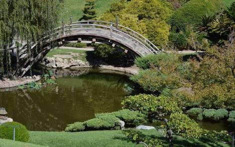 Landmark Huntington Gardens gets a water-wise makeover - Sacramento Bee | Zen Gardens | Scoop.it
