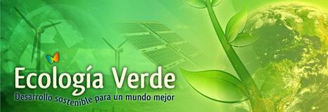 Fotos de paisajes verdes | Recursos Educativos para ESO, Geografía e Historia | Scoop.it
