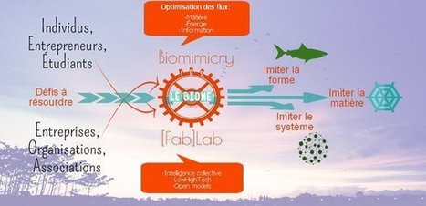 Le Biome : 1er biomimétisme FabLab | Imagination For People | FabLab | Scoop.it