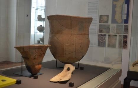 Alsace: A qui sont ces squelettes retrouvés par les archéologues sous le chantier de la LGV? | LVDVS CHIRONIS 3.0 | Scoop.it
