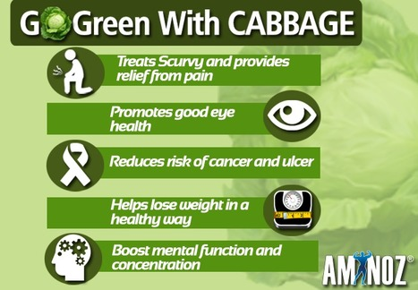 Health benefits of Cabbage | Aminoz Health and Sports Supplements | Scoop.it