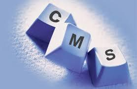 Best Content Management System | Responsive Web Design & Development: Key to Any Successful Business | Scoop.it
