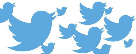 Twitter publie un chiffre d'affaires inférieur aux attentes des investisseurs   Actualité Social Media : blogs & réseaux sociaux   Scoop.it