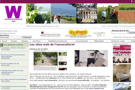 Cepdivin.org, le doyen du web œnoculturel | Culture Vin | Scoop.it