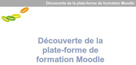 Découverte de la plate-forme de formationMoodle | TICE, Web 2.0, logiciels libres | Scoop.it