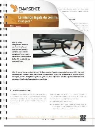 La mission légale du commissaire aux comptes : C'est quoi ? | Groupe EMARGENCE | Frédéric Gouvet | Scoop.it