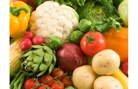 Principios para Cultivar Vegetales - Vea Su Jardín Crecer - Extensión de la Universidad de Illinois | buenas practicas agrícolas | Scoop.it