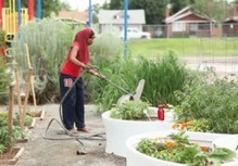 The Kitchen Community | School Gardening Resources | Scoop.it