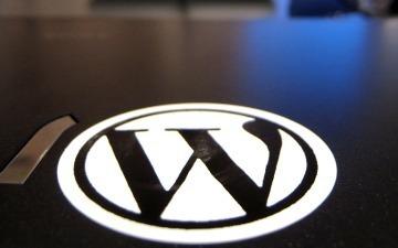 7 Ways to Build a Business Around WordPress | DigitalDirections | Scoop.it