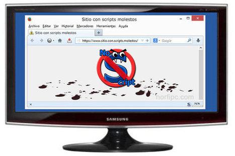 Usar NoScript para navegar en un internet más limpio y rápido   AgenciaTAV - Asistencia Virtual   Scoop.it