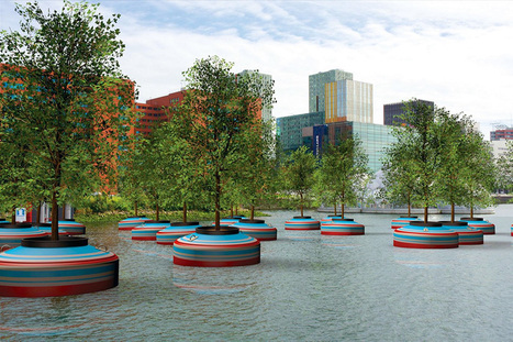 A Floating Forest of Trees will be Built on Water in Rotterdam | SMART URBANISM + PARAMETRIC DESIGN | Scoop.it