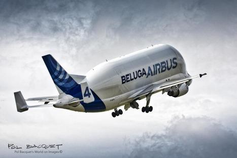 Airbus Beluga   Aviation & Airliners   Scoop.it