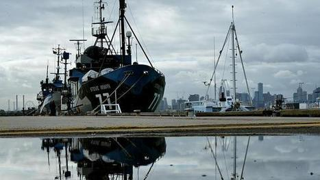 @SeaShepherd group's ships moored in Williamstown for breather ~ #NeededMoreThanEver | Rescue our Ocean's & it's species from Man's Pollution! | Scoop.it