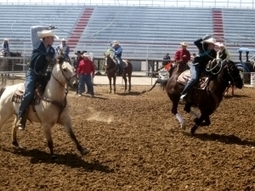 It's not this UA club's first rodeo | Arizona Daily Wildcat | CALS in the News | Scoop.it