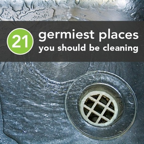 The 21 Germiest Places You're Not Cleaning | Landlord tips and housing news | Scoop.it