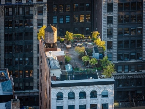14 photos inspirantes pour végétaliser son balcon (ou sa terrasse)   Curiosités planétaires   Scoop.it