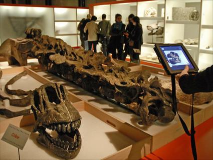 Pourquoi les conservateurs de musées sont-ils fragilisés ? | Musées et muséologie | Scoop.it