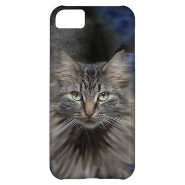 Maine Coon Cat iPhone 5 Cases | iPhone Cases | Scoop.it