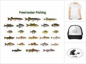 Arizona Trout Challenge – Freshwater Fishing News | Freshwater Fishing | Scoop.it
