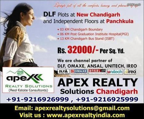 DLF PLOTS at Mullanpur Chandigarh by Apex Realty | Chandigarh | SahiPasand.com | Chandigarhproperty | Scoop.it