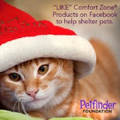 Bunny's Blog: Like Comfort Zone Products on Facebook to Support Shelter Animals | Pet News | Scoop.it