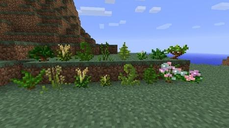 Temperate Plants Mod for Minecraft 1.6.2/1.5.2   5Minecraft   Minecraft download   Minecraft 1.6.2 Texture Packs   Scoop.it