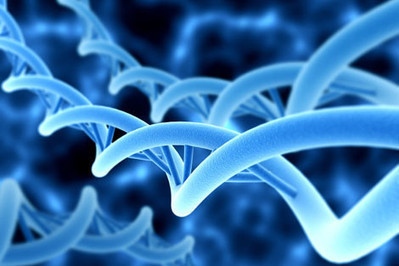 First comprehensive atlas of human gene activity released | HSPH News | Harvard School of Public Health | Institut Pasteur de Tunis-معهد باستور تونس | Scoop.it
