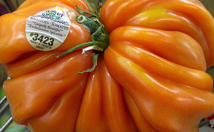 "The Case For Eating ""Ugly"" Fruits and Vegetables 