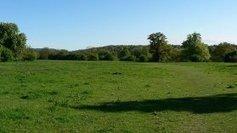 Sommet de l'élevage : l'avenir de la planète passe par l'herbe ! - France 3 | BTPL | Scoop.it