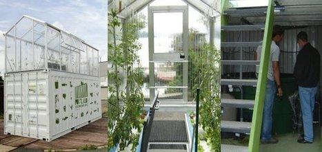 Technologie : L'agriculture urbaine, c'est quoi? | Developpement Durable | Nourrir la ville | Scoop.it