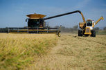 California rice farmers could get pollution credit - The Sacramento Bee | Sustain Our Earth | Scoop.it