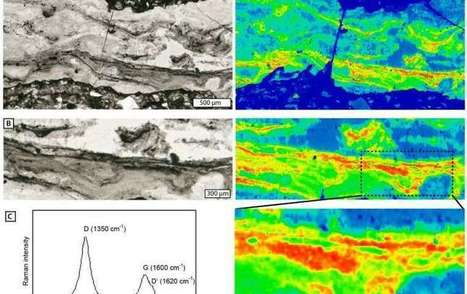 Researchers find evidence of cavity-dwelling microbial life from 3 billion years ago | Fragments of Science | Scoop.it