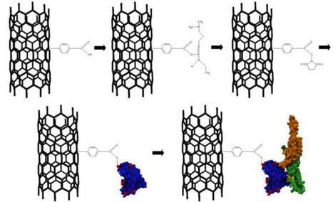 Carbon nanotube transistors orders of magnitude better at spotting cancer, say bioengineers | KurzweilAI | Longevity science | Scoop.it