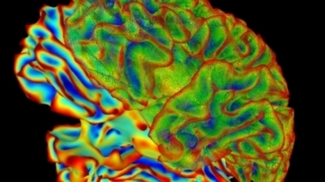 Can We Decipher the Language of the Brain? | Amazing Science | Scoop.it