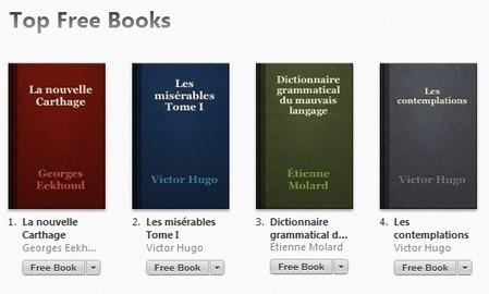 17 sites pour télécharger gratuitement et légalement des ebooks ! | CaféAnimé | Scoop.it