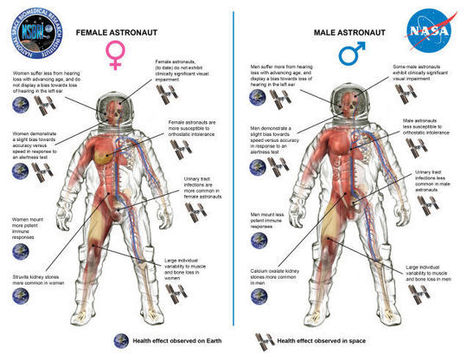 Life in Space Affects Men's And Women's Health Very Differently - io9 | Space | Scoop.it