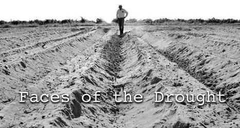 Gallery: Faces of the drought | GarryRogers NatCon News | Scoop.it