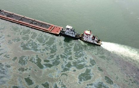 Cleanup after Texas oil spill causes disruption on major waterway | Rescue our Ocean's & it's species from Man's Pollution! | Scoop.it
