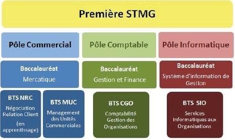 Indécis : débouchés et orientation après le Bac STMG - Bac STG | orientation | Scoop.it