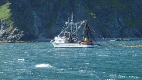 American Fisheries Advisory Committee Act Advances, D.C. | Aquaculture Directory | Aquaculture Directory | Scoop.it