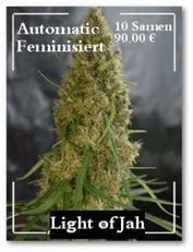 Selbstjustiz durch Wirtschaftliche Unabhängigkeit als Cannabis Abnehmer | Irierebel.com | Scoop.it