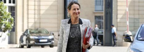 Pesticides: Ségolène Royal veut renforcer la protection des travailleurs agricoles | Réglementation Environnementale | Scoop.it