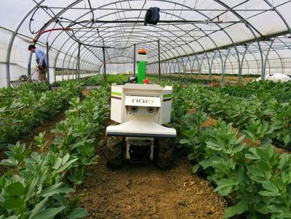 La robotique au service de l'environnement : Naïo Technologies | Une nouvelle civilisation de Robots | Scoop.it