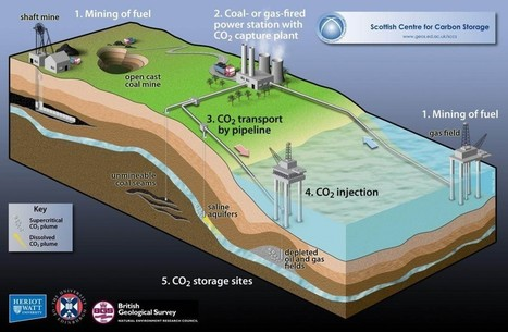 What Is Carbon Capture and Storage? - EHS Journal | The Future of Water & Waste | Scoop.it