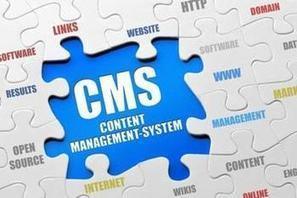 WordPress : le CMS open source au crible en 2016 | Actualités pour les documentalistes très high tech | Scoop.it