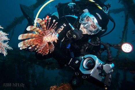 5 Best Underwater Video Editing Tips | Indigo Scuba | Scoop.it
