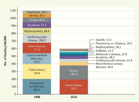 Changes in Mortality: 1900 to 2010 | Geography Education | Scoop.it