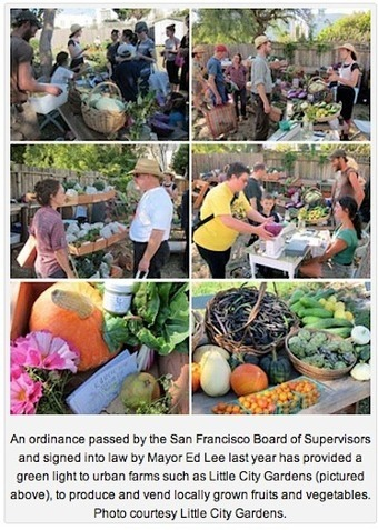 San Francisco Legitimizes Urban Farming — City Farmer News | Vertical Farm - Food Factory | Scoop.it